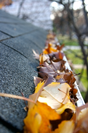 Kerr Brothers Roofing Keeps Your Gutters Clean from Leaves in Fall